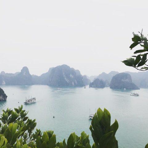 Vietnam: a hidden gem